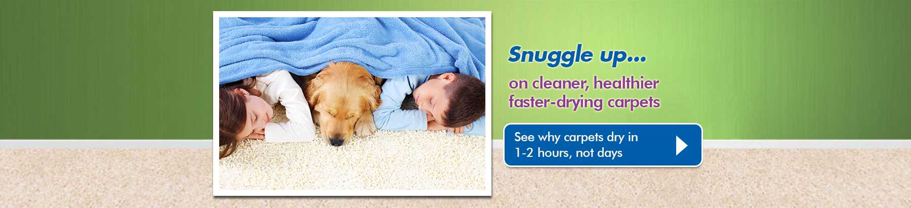 Why Chem-Dry Carpet Cleaning